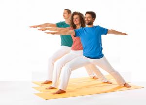 Offene sanfte Mittelstufe (derzeit bitte anmelden) @ Yoga Vidya Kassel | Kassel | Niedersachsen | Deutschland